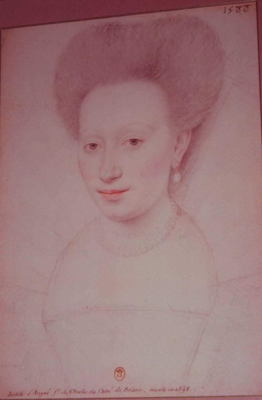 Judith d'Acigné