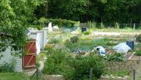 La longue histoire des jardins et des courtils